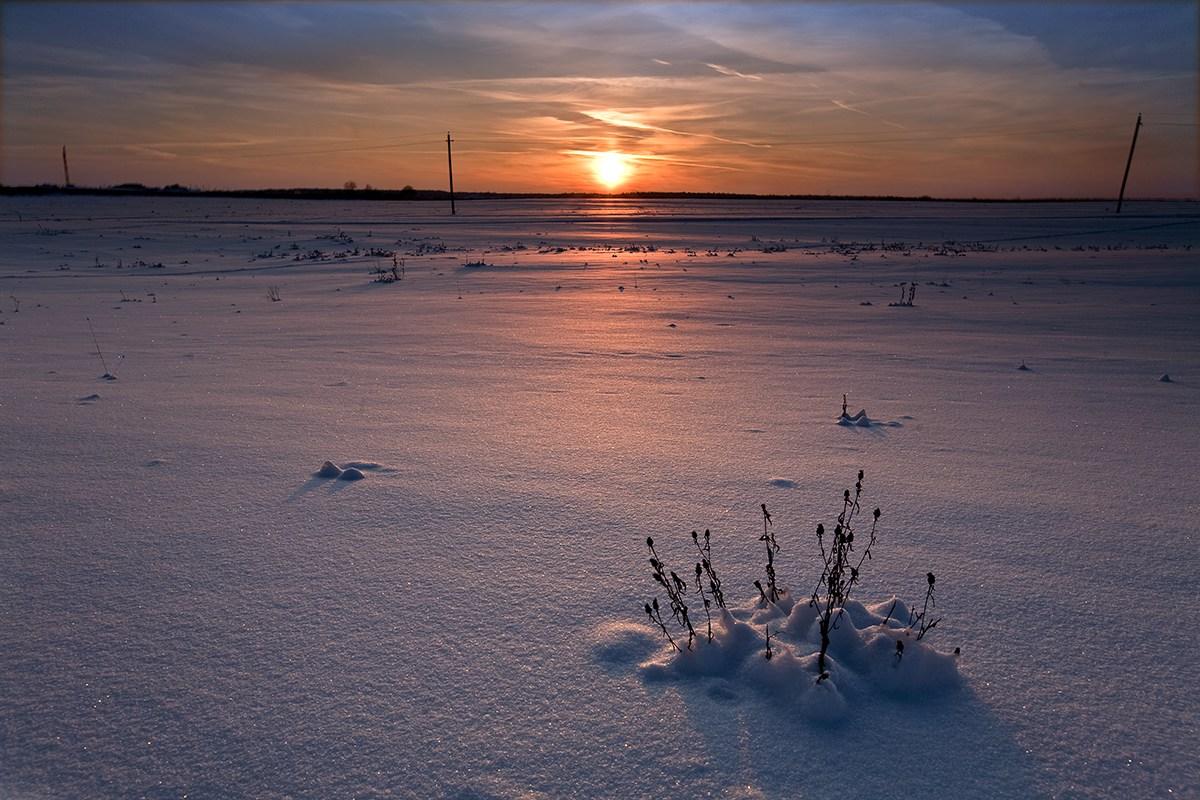 """фото """"Степь да степь кругом..."""" метки: пейзаж, закат, зима"""