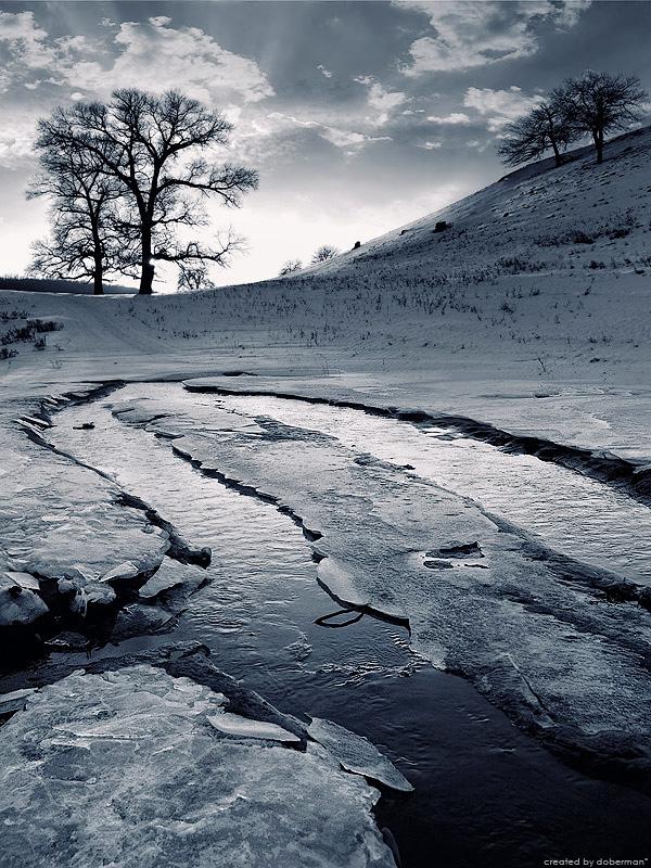 """фото """"Композиционный этюд в дуотоне"""" метки: пейзаж, зима"""