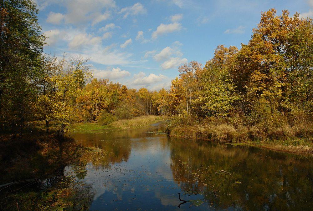 """фото """"Осень."""" метки: пейзаж,"""