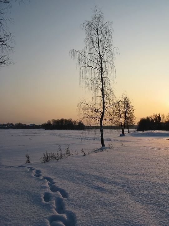 "фото ""Низкое солнце января (3)"" метки: пейзаж, зима"