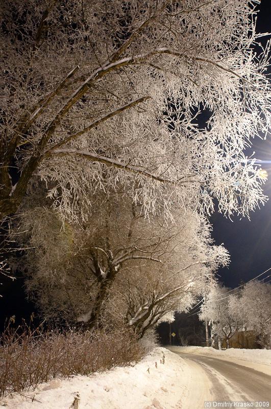 """фото """"После тумана"""" метки: пейзаж, зима, лес"""