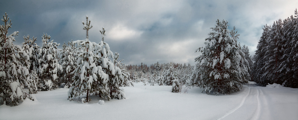 """photo """"***"""" tags: landscape, panoramic, winter"""