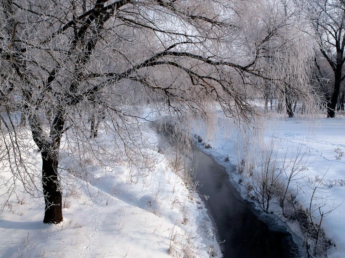 """фото """"Этюд №5"""" метки: пейзаж, зима"""