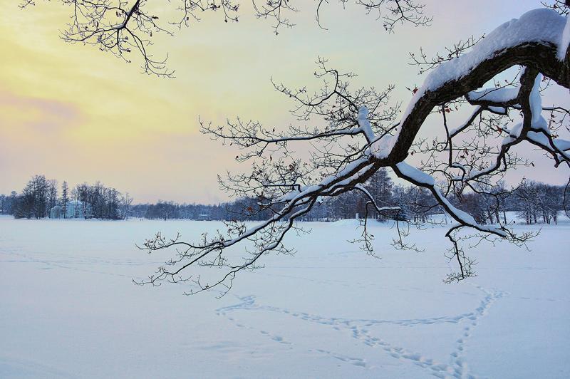 """фото """"Треугольники"""" метки: пейзаж, зима"""