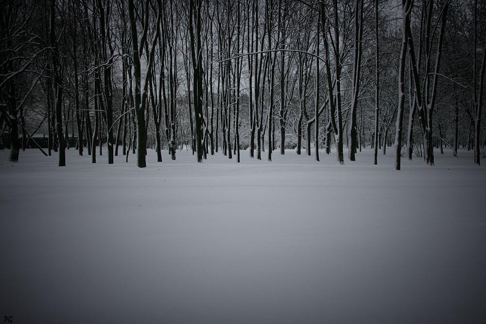 """фото """"зима."""" метки: пейзаж, зима"""