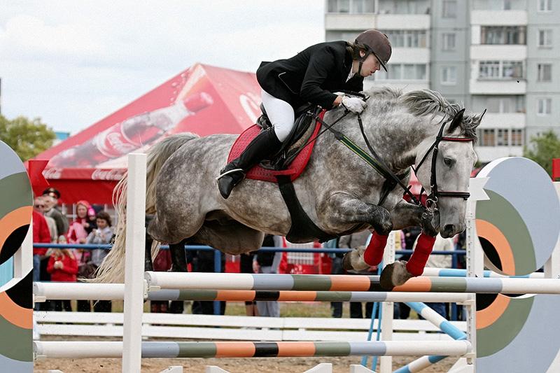 """фото """"Кони в яблоках - кони серые"""" метки: спорт, репортаж,"""