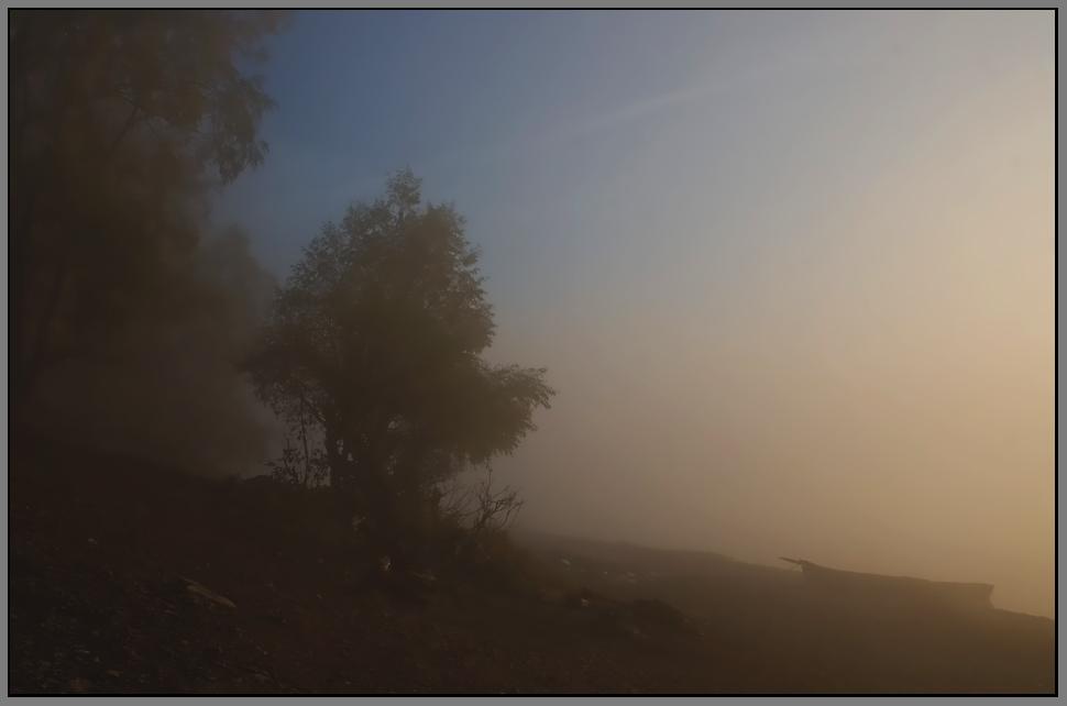 """фото """"Утро туманное..."""" метки: ,"""