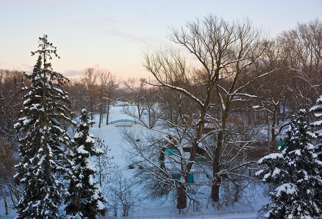 """фото """"Зимний парк"""" метки: пейзаж, зима"""