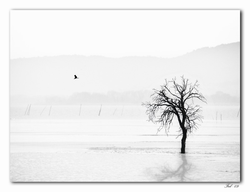 "фото ""A quiet lake"" метки: пейзаж,"