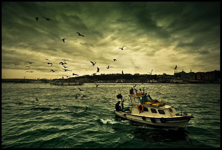 "photo ""the pavlov seagulls"" tags: landscape, city, water"