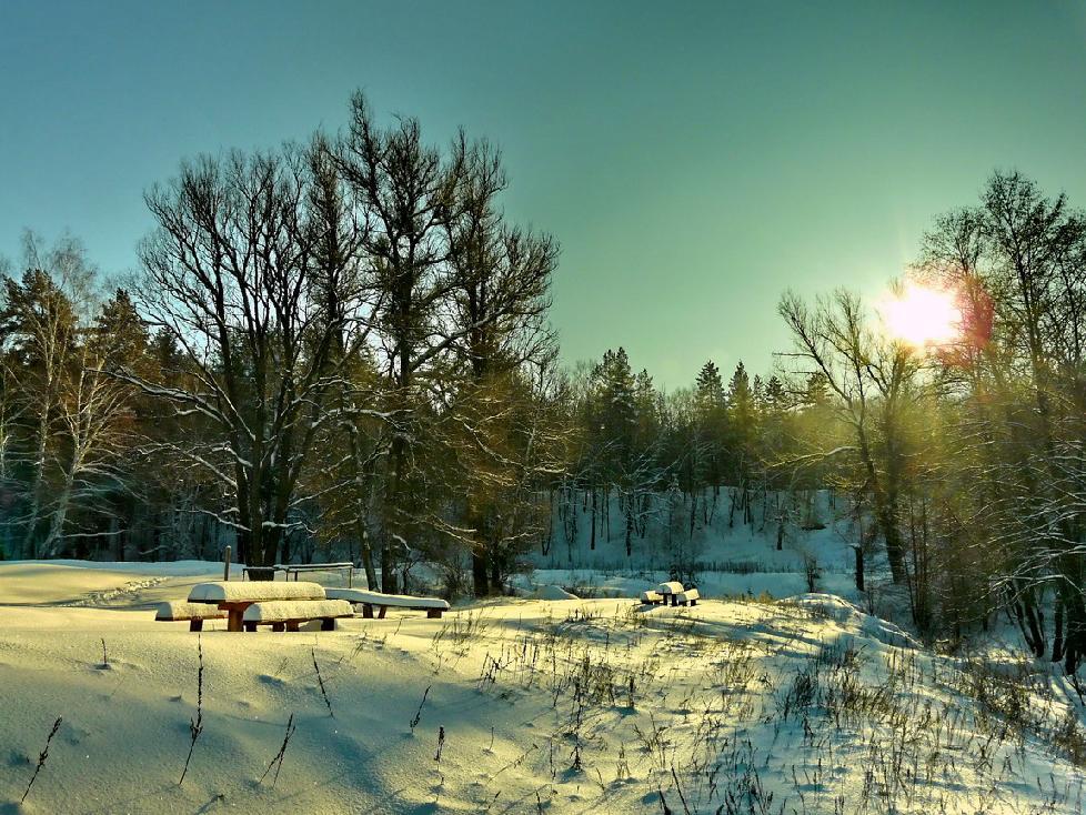 "фото ""Музыка под снегом"" метки: ,"