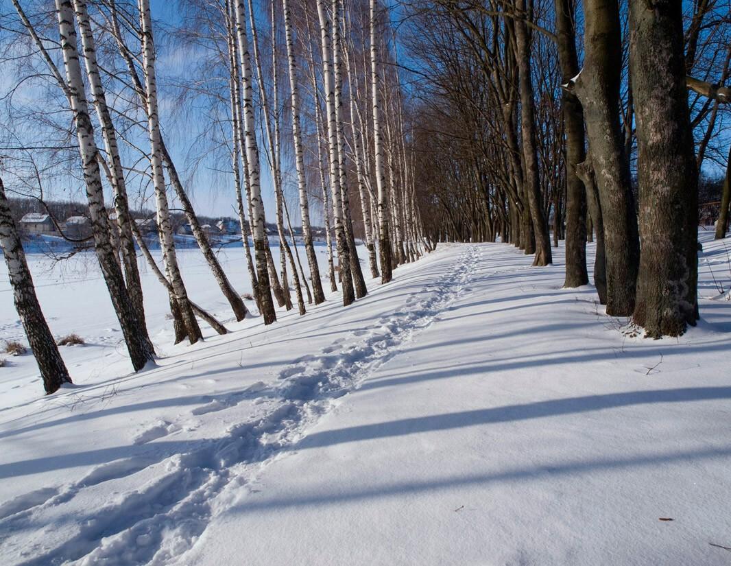 """фото """"Этюд №6"""" метки: пейзаж, зима"""