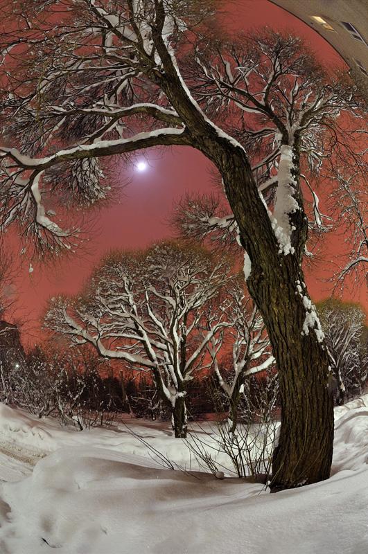 "photo ""***"" tags: landscape, night, winter"