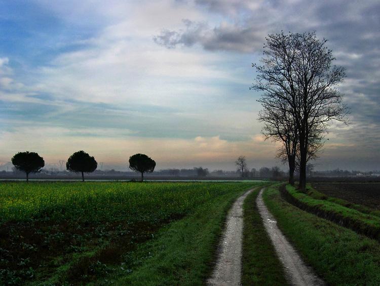 """photo """"Landscape and ligt"""" tags: landscape,"""