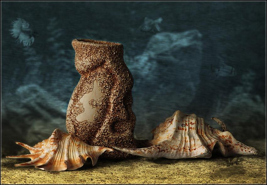 "photo ""***"" tags: still life, underwater,"