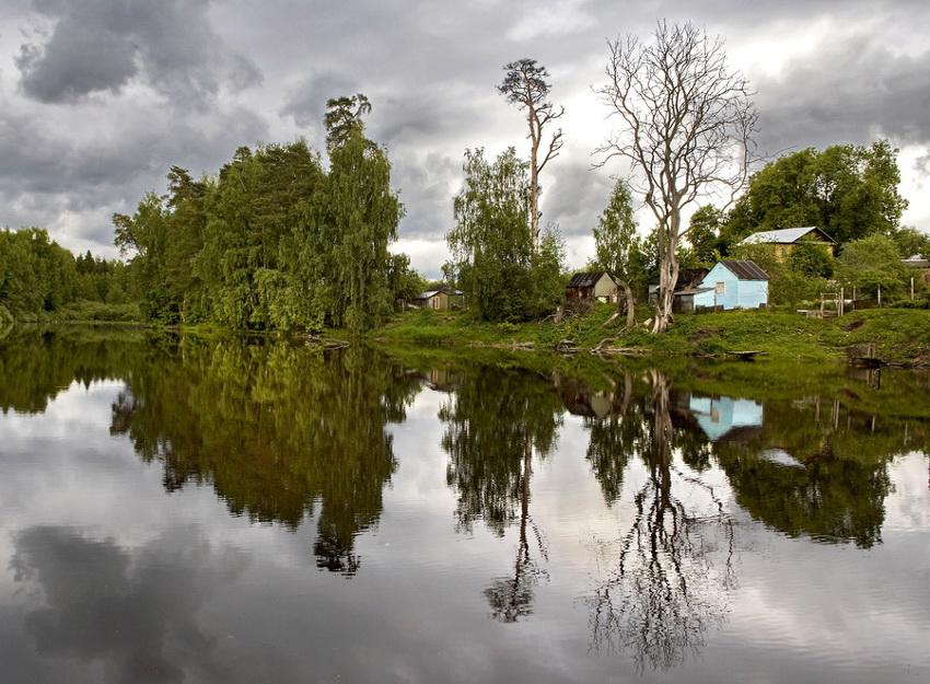 "фото ""Старый пруд (2006)"" метки: пейзаж, лето"