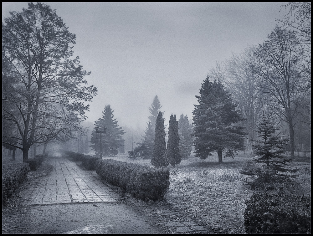 "photo ""Chilly morning"" tags: landscape, black&white, winter"