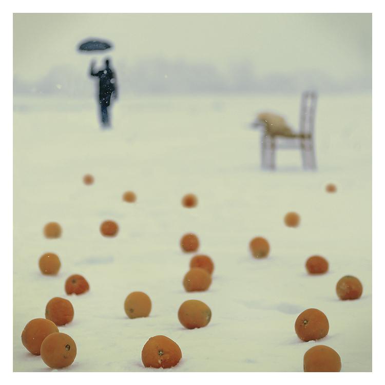 """photo """"Oranges"""" tags: misc., genre,"""