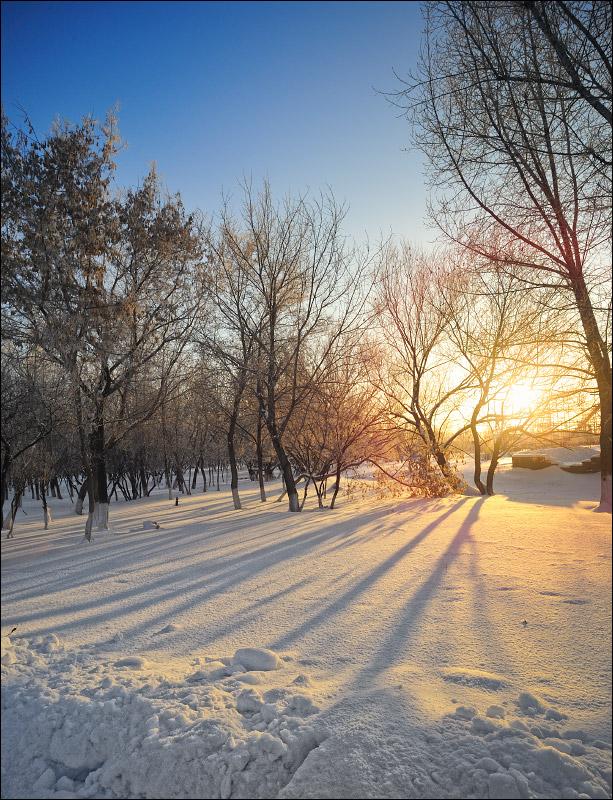 "фото ""Contrasts"" метки: пейзаж, зима"