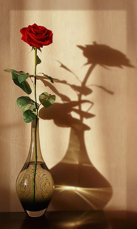 "фото ""Танго с тенью"" метки: натюрморт,"