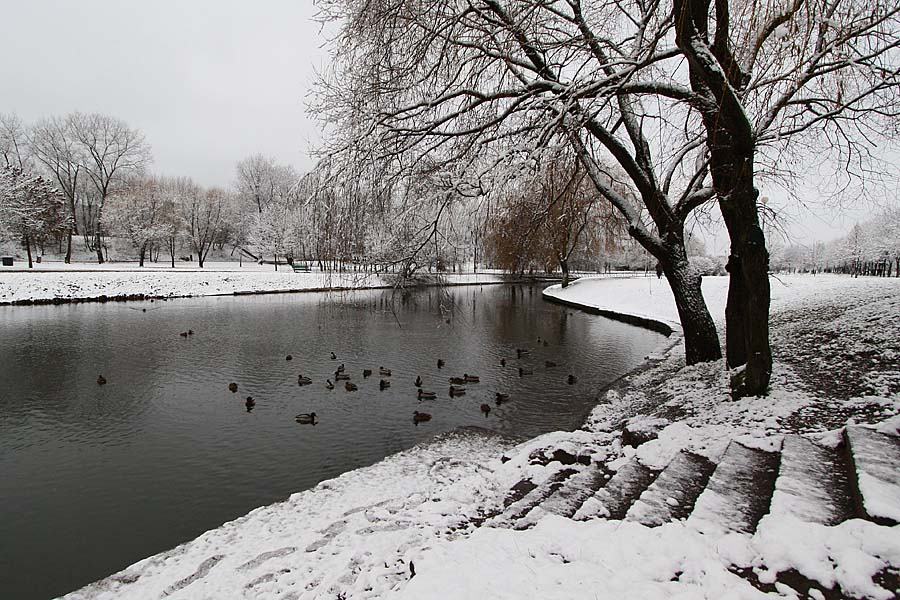 """фото """"Первый снег 2"""" метки: город,"""
