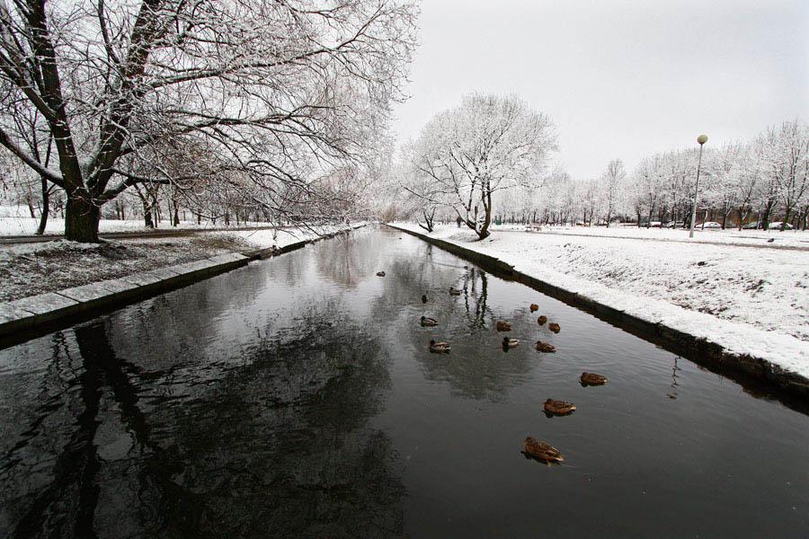 """фото """"Первый снег 3"""" метки: жанр,"""