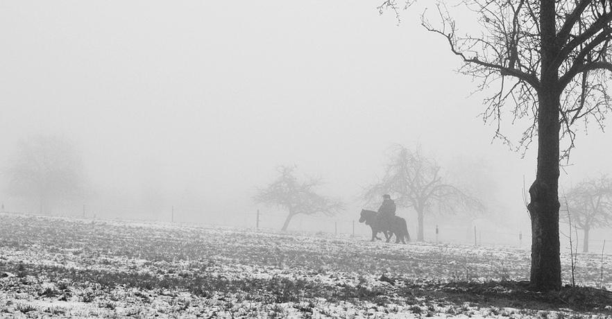 """фото """"Утренняя прогулка"""" метки: пейзаж, зима"""