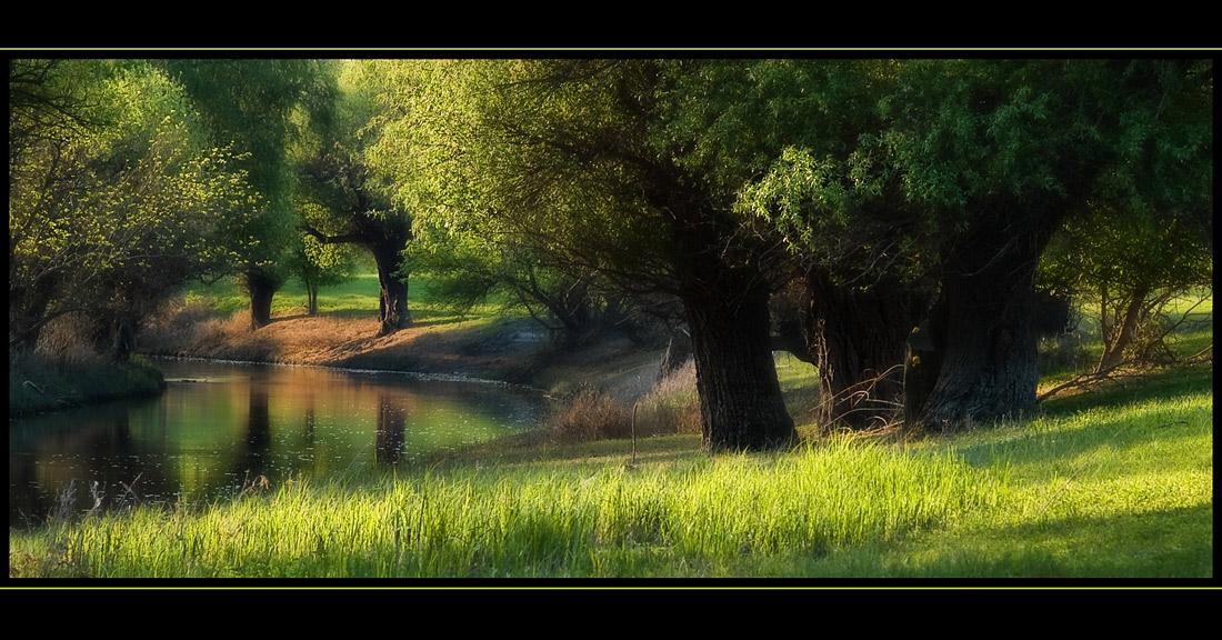 """фото """"Riverside idyll"""" метки: пейзаж, вода"""