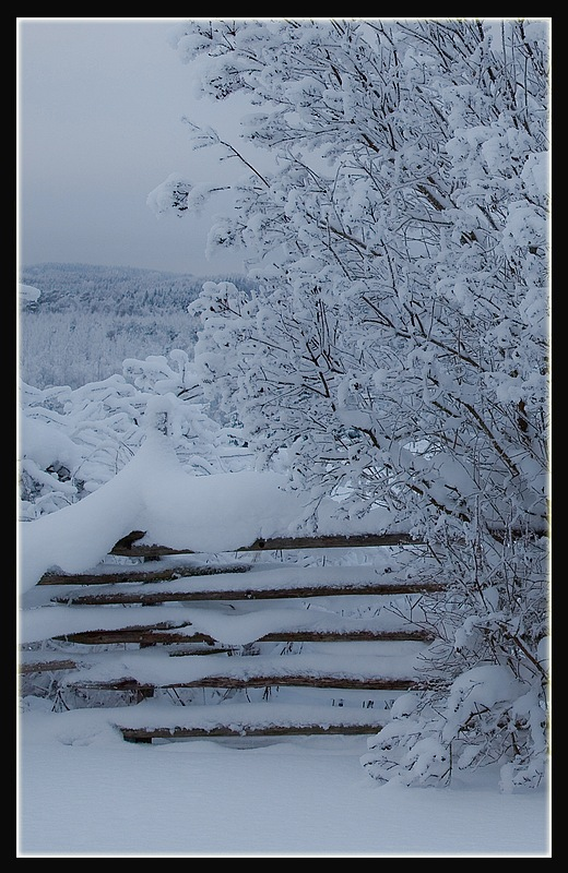 "photo ""Snowfence"" tags: landscape, winter"