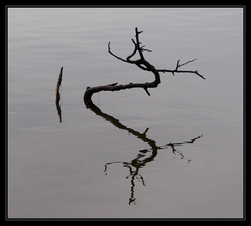 """photo """"Hieroglyphs on the water"""" tags: abstract,"""