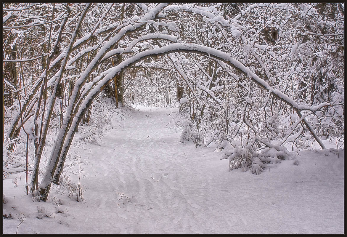 "photo ""Arch"" tags: landscape, winter"