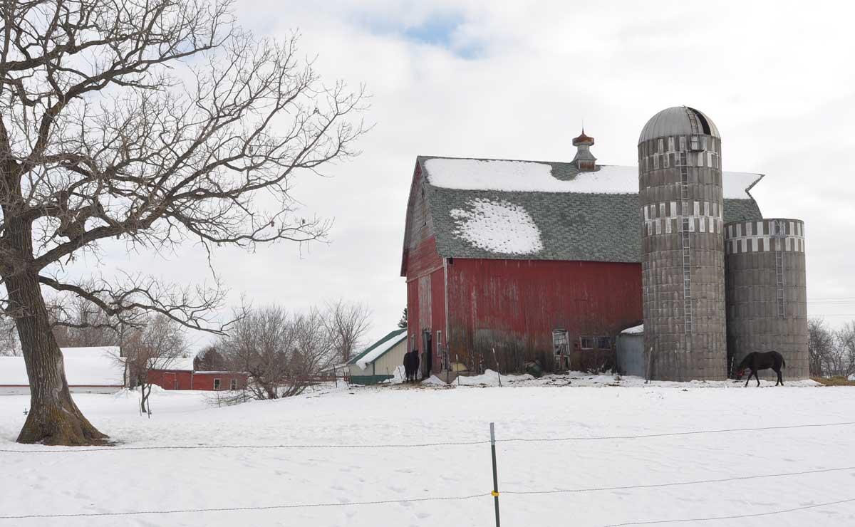 "photo ""barn study 01"" tags: landscape, winter"