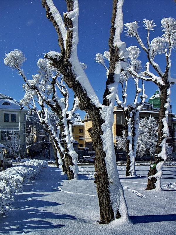 "photo ""***"" tags: landscape, winter"