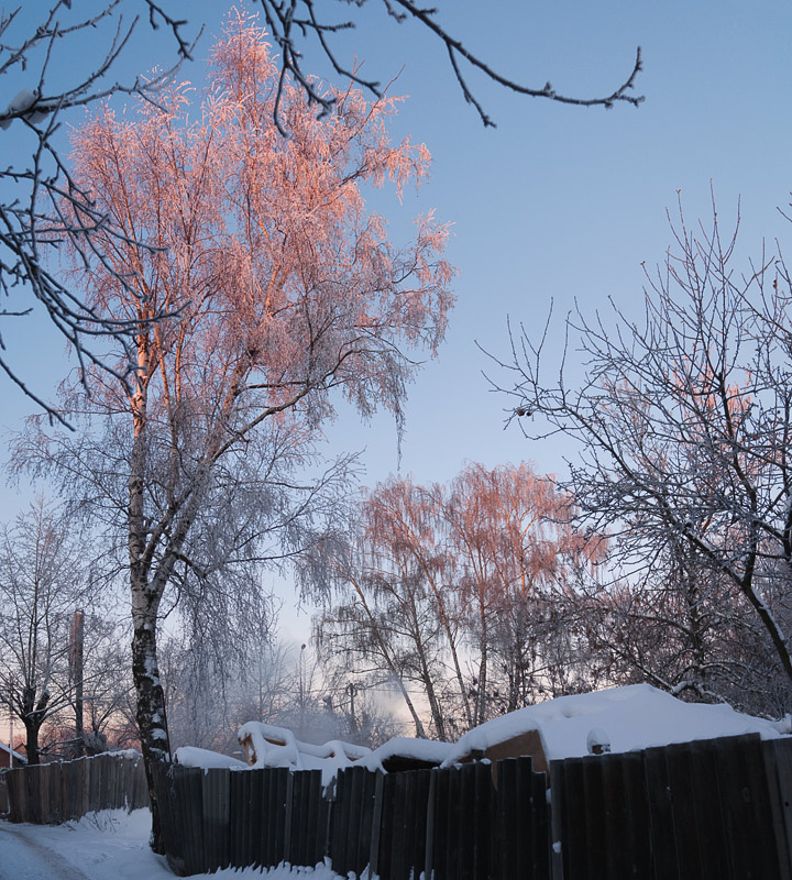"photo ""In the morning"" tags: landscape, winter"