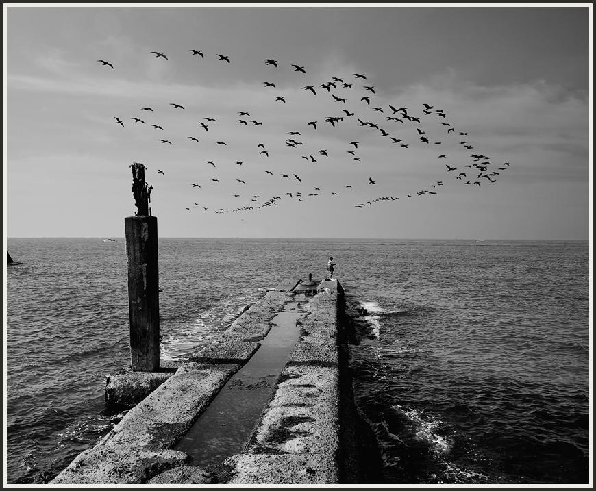 Черно белые картинки с надписью на море, открытки днем рождения
