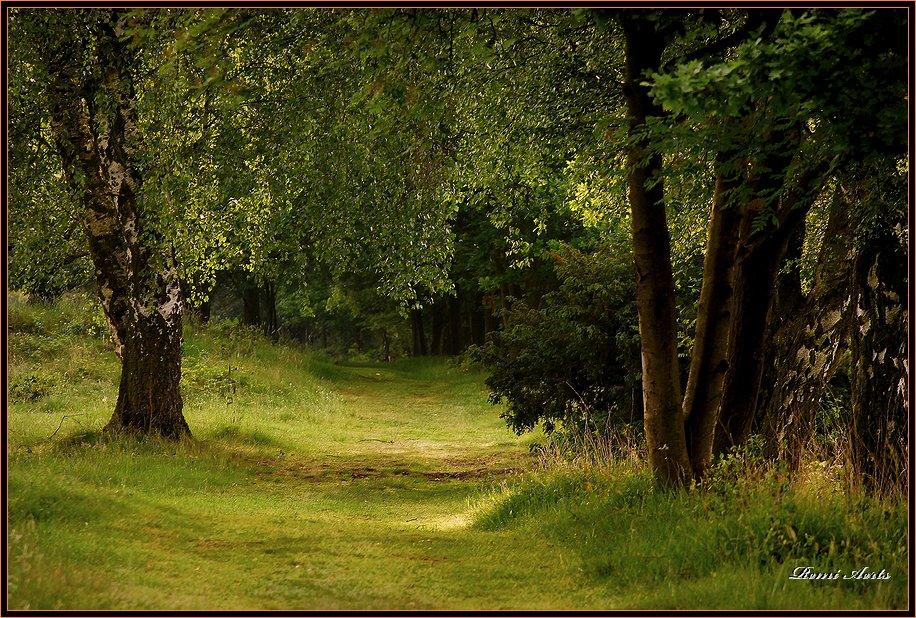 """photo """"De maten # 3"""" tags: architecture, landscape, autumn"""