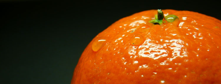 "photo ""orange"" tags: macro and close-up, fragment,"