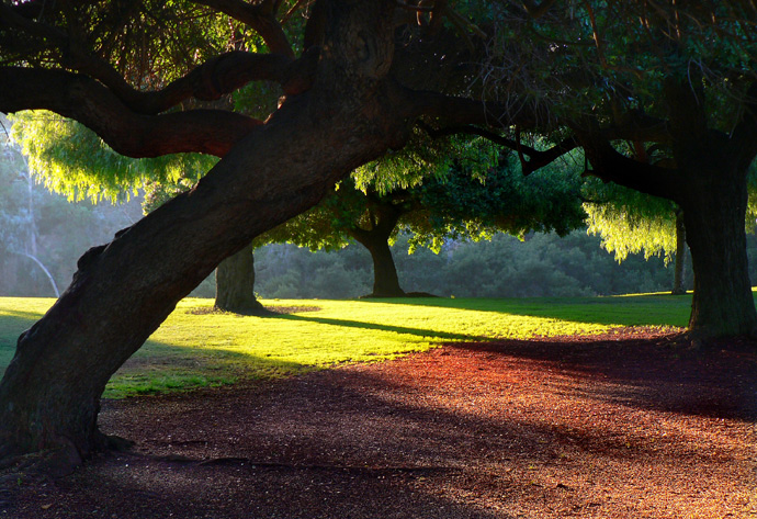 "photo ""San Diego/Balboa Park"" tags: landscape,"