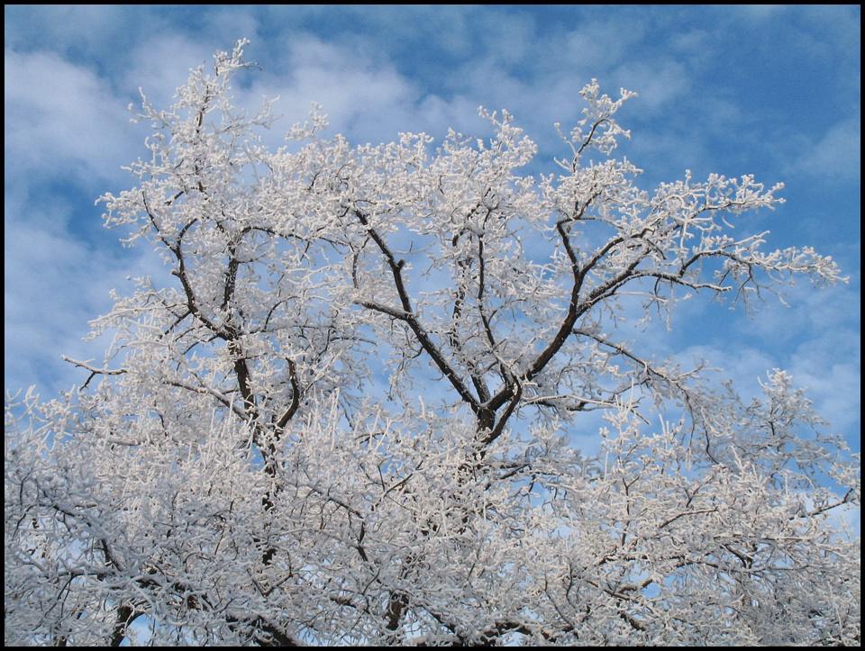 "фото ""Середина марта..."" метки: пейзаж, весна"