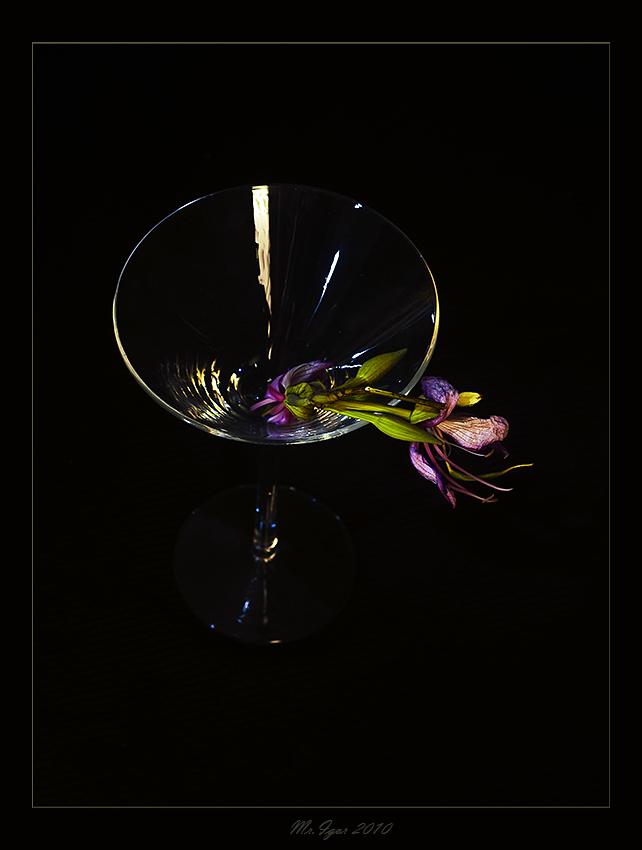 "фото ""Просто цветок"" метки: натюрморт, природа, цветы"