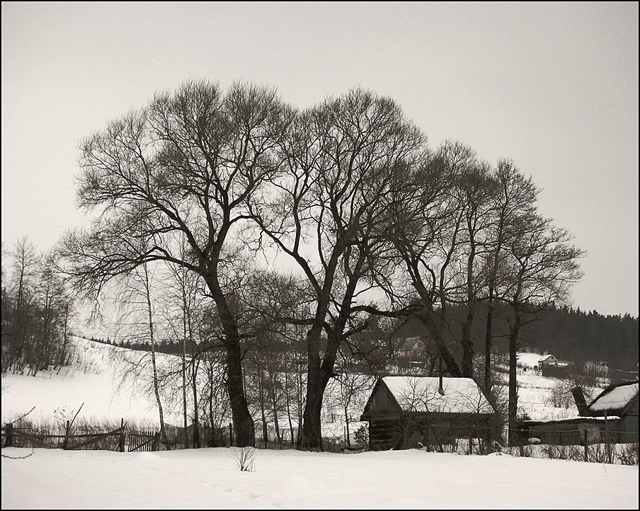 """фото """"Графика окончания зимы"""" метки: пейзаж, зима"""