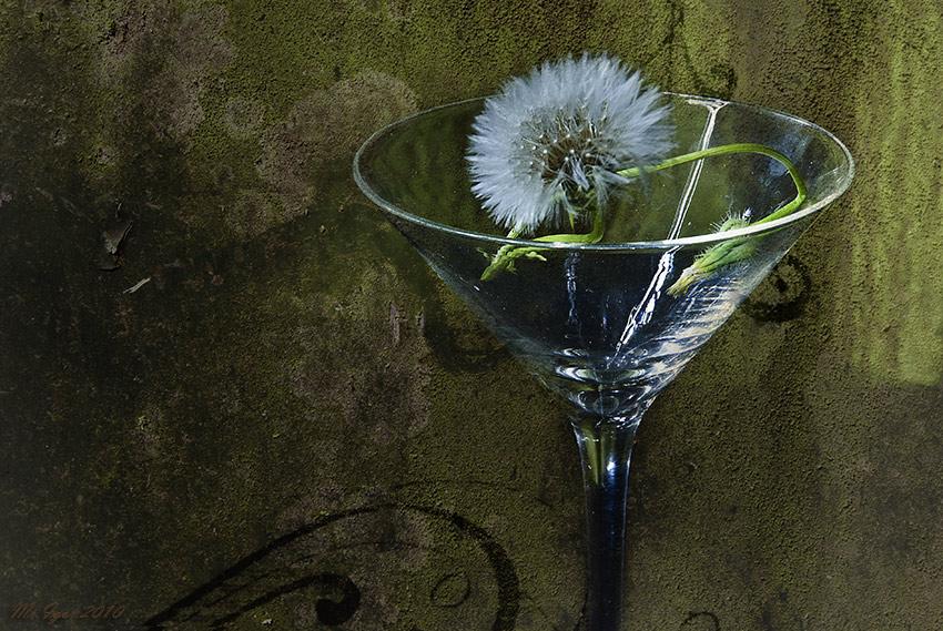 "фото ""Солнце в бокале"" метки: натюрморт, природа, цветы"