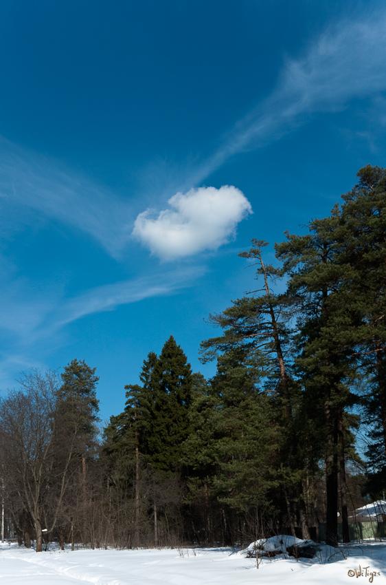 """фото """"Небо в марте"""" метки: пейзаж, весна, облака"""