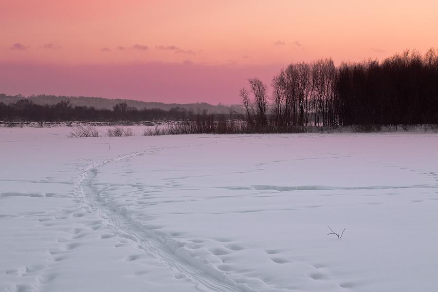 """фото """"Les cieux zefirno-roses"""" метки: пейзаж, закат, зима"""