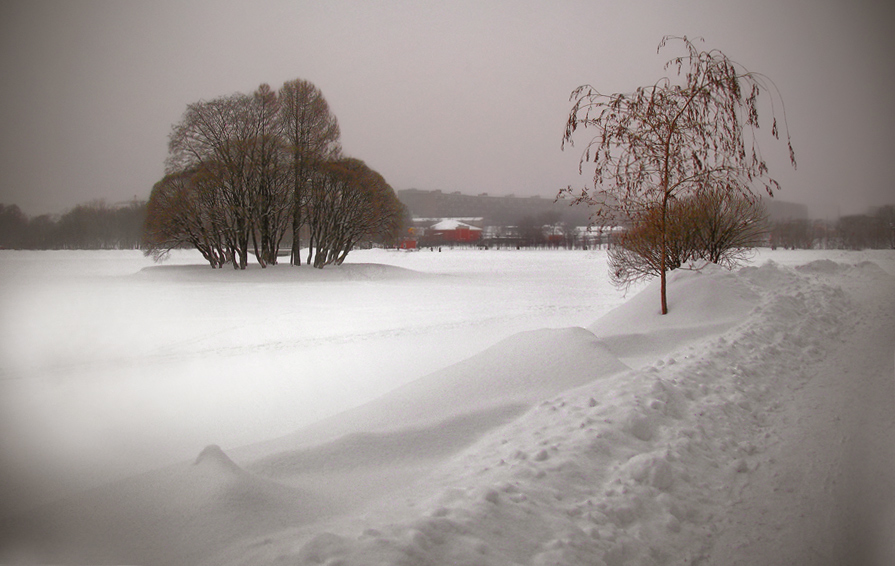 "photo ""Snowy silence ..."" tags: landscape, winter"
