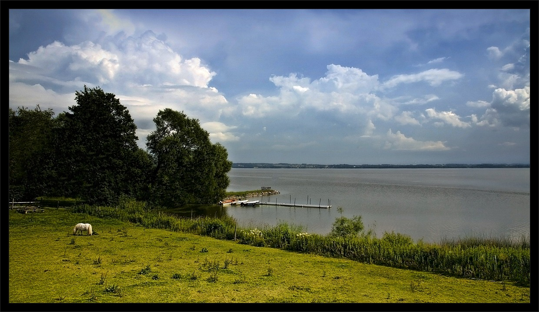 "photo ""Pastoral"" tags: landscape, summer"