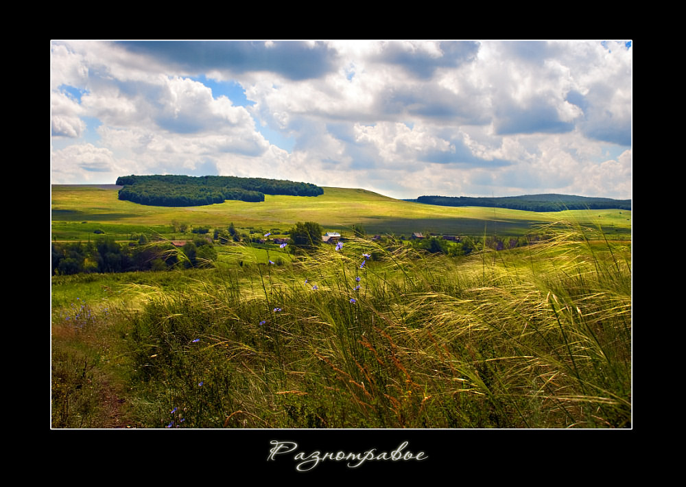 """photo """"In fragrant grasses"""" tags: landscape, summer"""