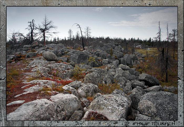 "photo ""Vottovaara"" tags: landscape, mountains"