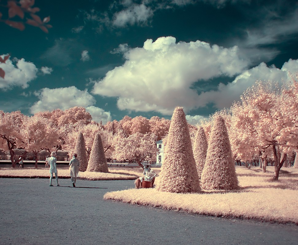 "photo ""IR-Summer"" tags: ,"