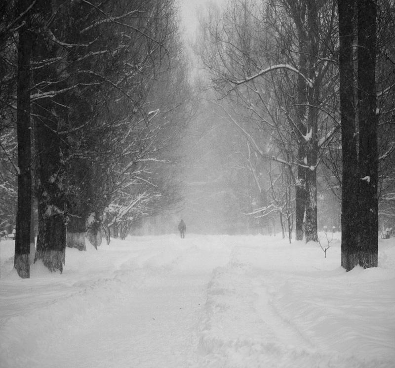 "photo ""untitled"" tags: landscape, black&white, winter"